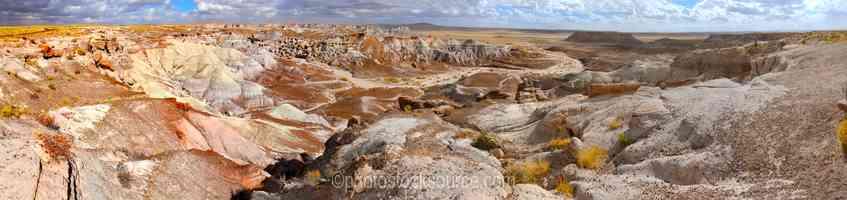 Petrified Logs on Blue Mesa