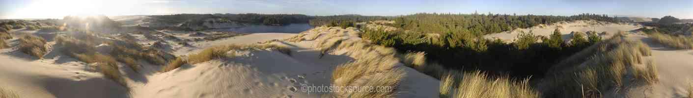 Cleawox Lake Dunes