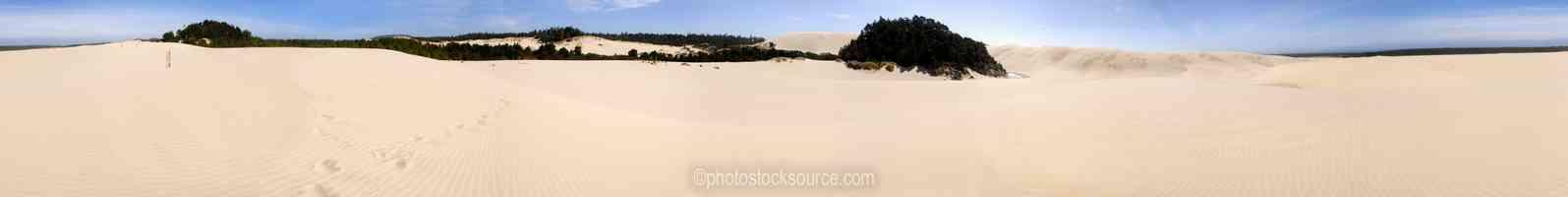 Honeyman Park Dunes