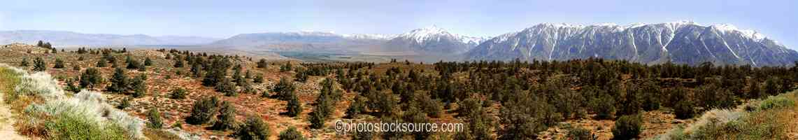 Mt Tom from Owens Valley