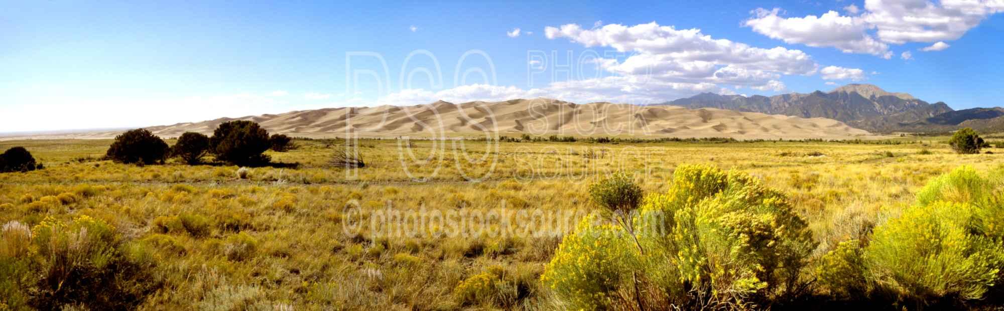 Sand Dunes and Sage Brush
